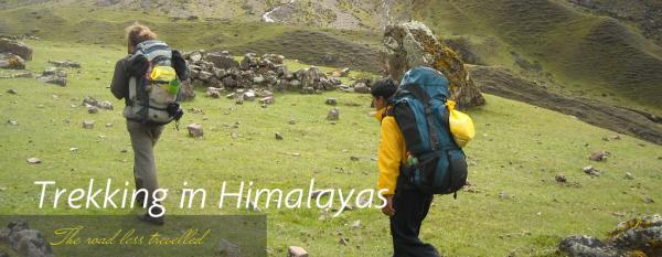 Trekking in Himalayas have become more attractive to walkers and One of the most inspiring travel experiences you can ever have to the Himalayas – Viktorianz.com