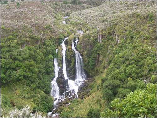 Random waterfall between Napier & Taupo