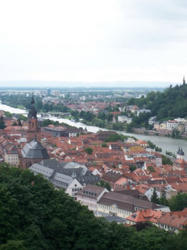 View of the Rhine and Heidelberg
