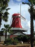 Aruba windmilll